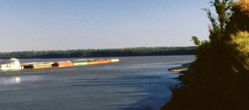 "The Mississippi River is an integral part of the nation's transportation system, particularly in ts lower reaches.  Barge ""tows"" like this carry around 60% of the country's agricultural exports."